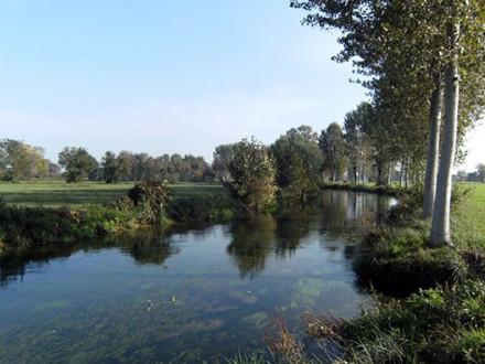 fiume-tormo