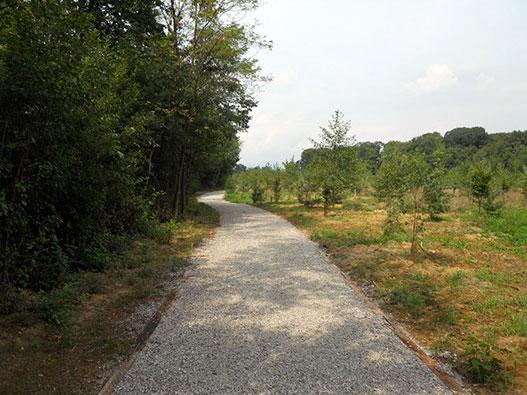 Parco della Brughiera Briantea - Gite in Lombardia