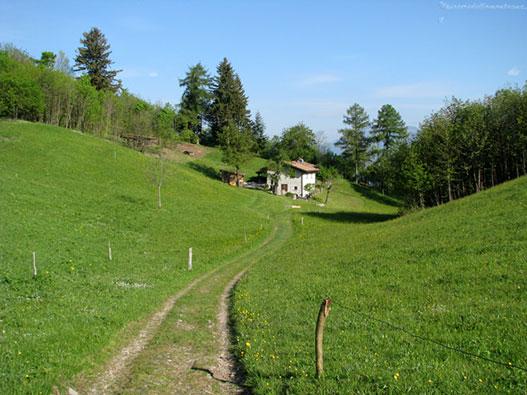 Passeggiata da Baiedo al Rifugio Riva - Gite in Lombardia