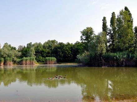 parco-rio-vallone