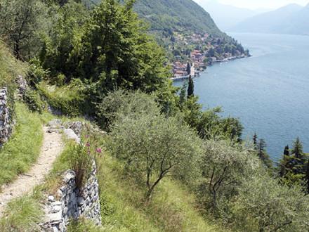 Sentiero del Viandante: Varenna - Bellano