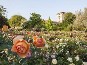 Beautiful Castello Quistini (Brescia) · Giardini Fioriti Castello Quistini