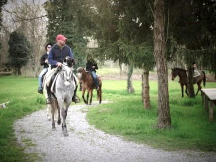 Passeggiate a cavallo nel Parco Adda tra boschi e sentieri