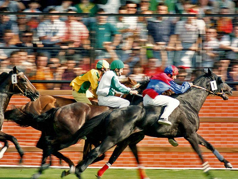 Corse Cavalli Milano Calendario.Palio Di Legnano Tra Corse Di Cavalli E Sfilate Medioevali