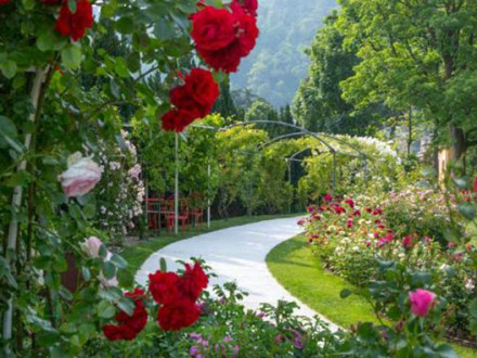 Roseto della Pace - Parchi e giardini di Varese