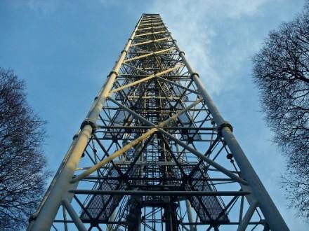 Saliamo in cima alla Torre Branca!