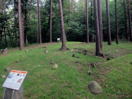 Area Archeologica del Monsorino di Golasecca