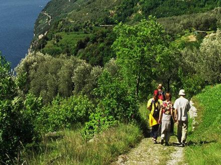 monte cas - trekking brescia