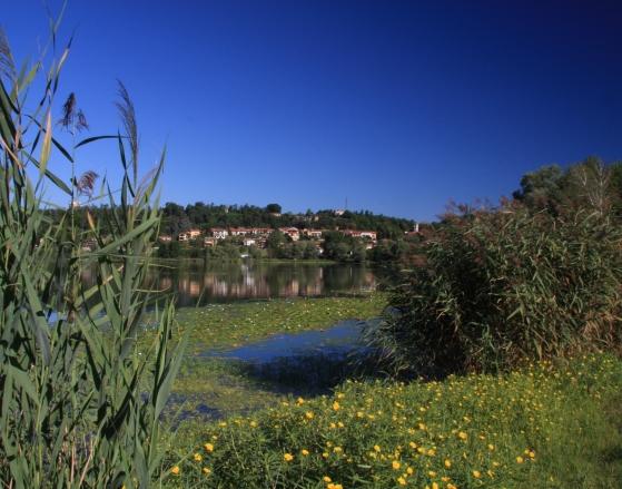 Pista ciclabile del Lago di Comabbio - Gite in Lombardia