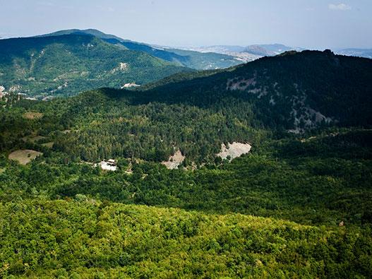 Giardino Pietra Corva : Giardino botanico alpino di pietra corva gite in lombardia