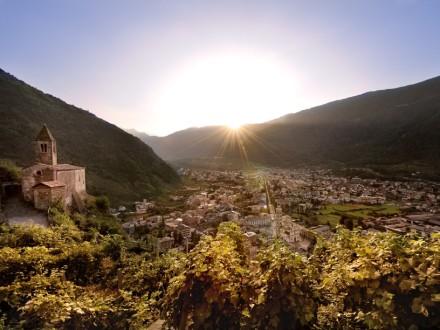 tirano-wine-festival