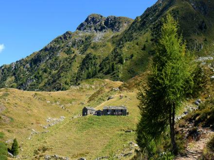 Alpe Pedroria e Alpe Madrera